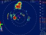 いわしを捕食するマグロ         140.0 kHz