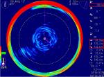 底付きのヤリイカ     130.4 kHz